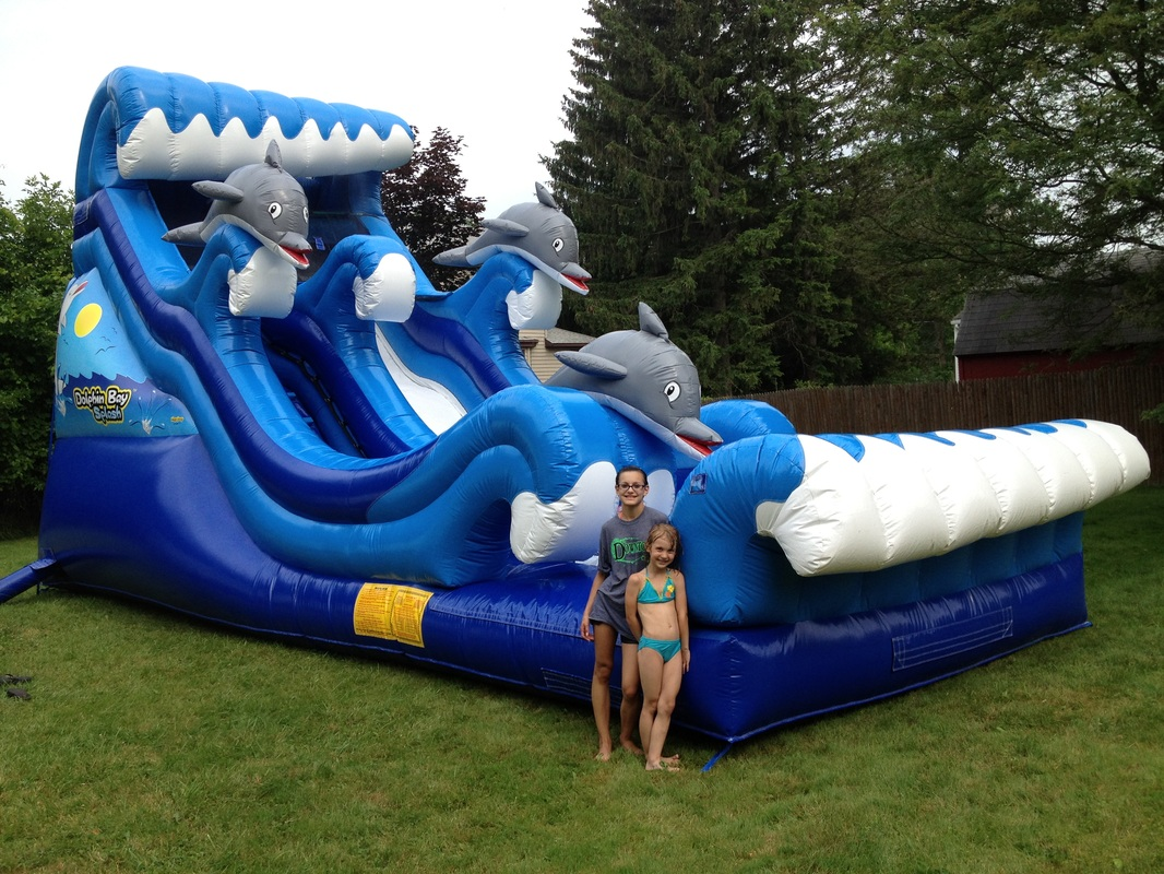 Dolphin Inflatable Slide The Fun Train Party Rentals