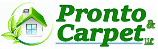 Pronto & Carpet LLC Logo