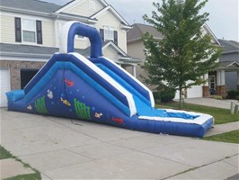 Aquatic Water Slide